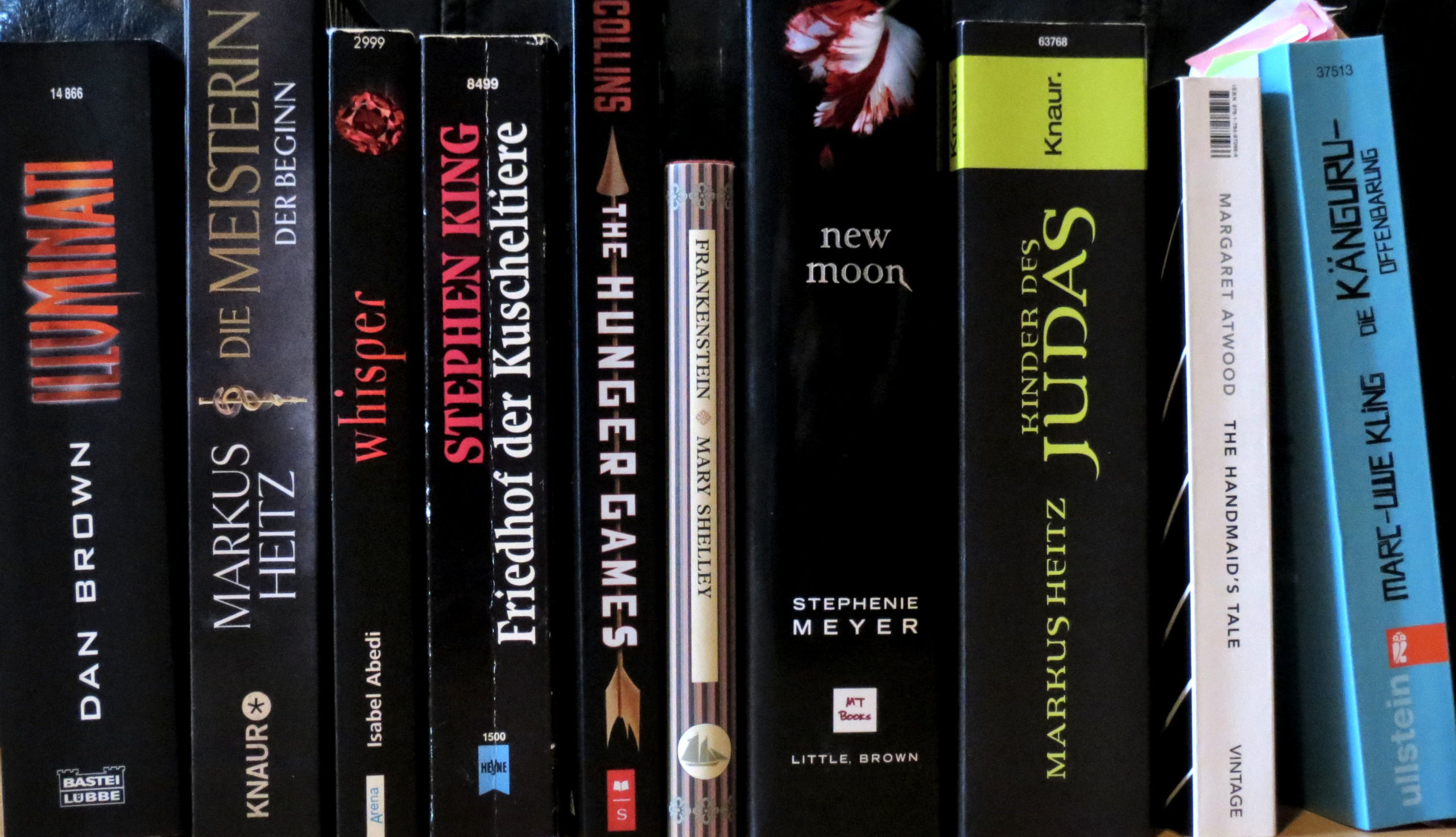Aufgereihte Bücher: Illuminati, Die Meisterin: Der Beginn, Whisper, Friedhof der Kuscheltiere, The Hunger Games, Frankenstein, New Moon, Kinder des Judas, The Handmaid's Tale, Die Känguru-Offenbarung