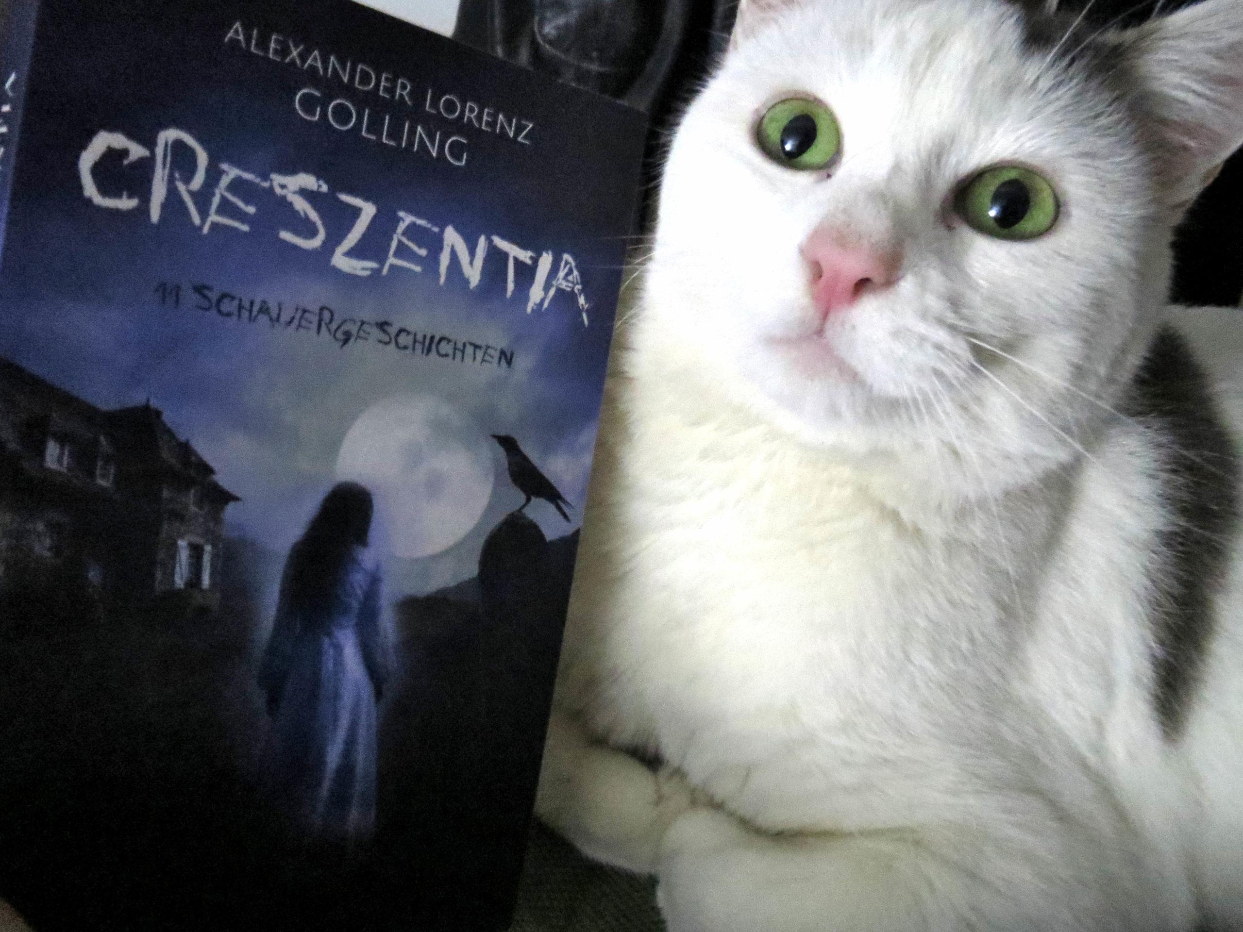 """Das Buch """"Creszentia"""" von Alexander Lorenz Golling neben einer weißen Katze, die mit aufgerissenen grünen Augen in die Kamera starrt."""